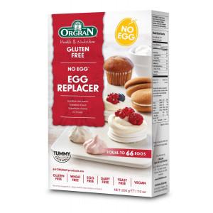 Jajčni nadomestek